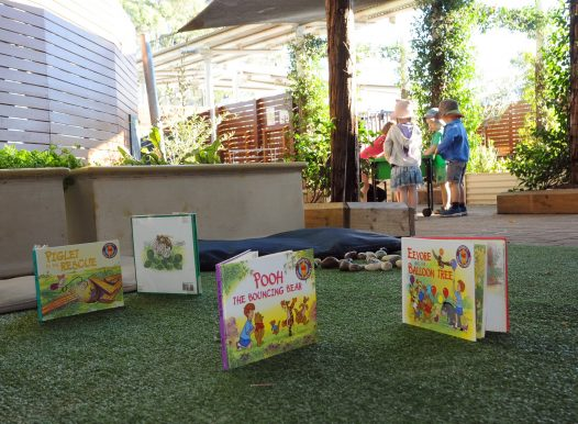 Explore Develop Epping road North Ryde child care and preschool outdoor 24