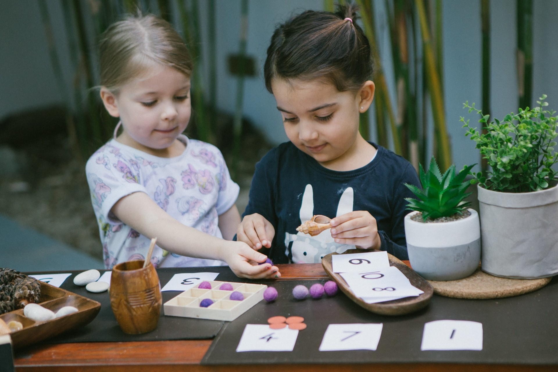 Explore Develop Frenchs Forest Childcare and Preschool N12FF525
