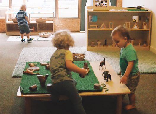 ExploreDevelop Camperdown Childcare A Explorers room 2