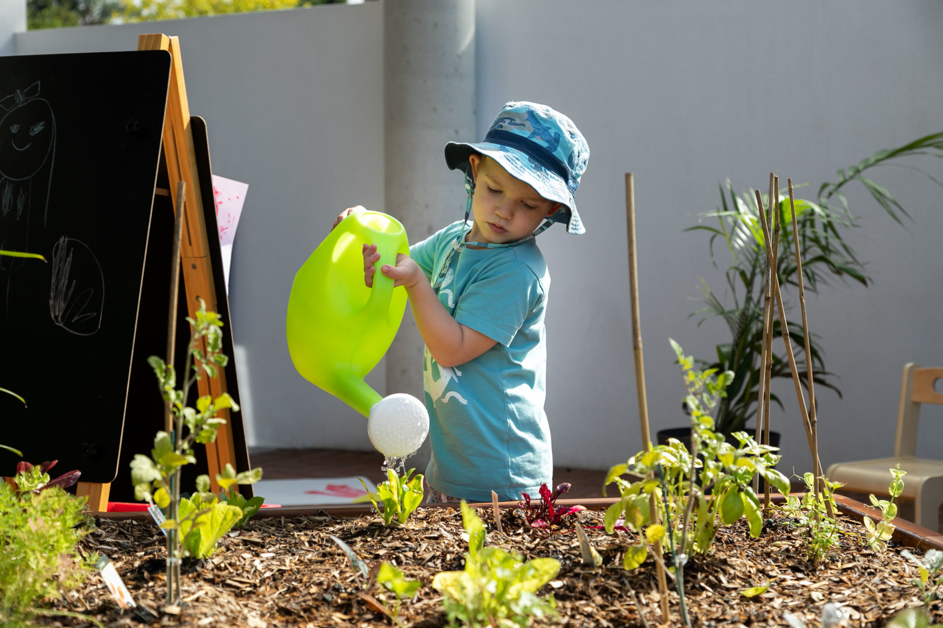 Explore & Develop Roseville child care and preschool