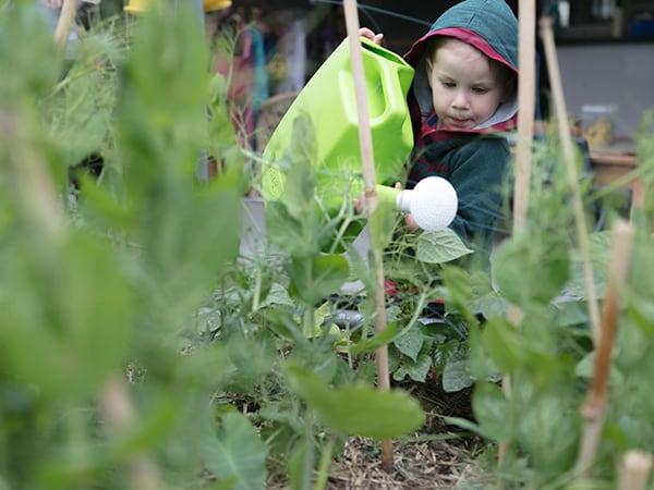 Explore & Develop Annandale Child Care